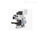 激光共聚焦显微镜LMS800