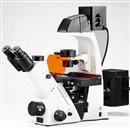 BDS500倒置荧光显微镜