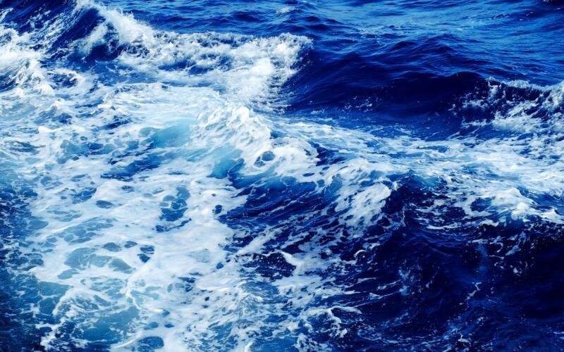 多家中標中國海洋大學近500萬采購項目
